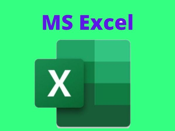 Microsoft Excel – Excel from Beginner to Advanced in Hindi